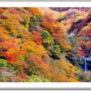 秋彩の囁き