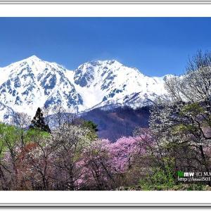 盛春の白馬連峰