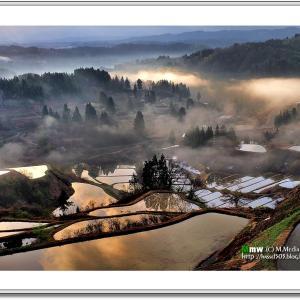 朝靄沸く山里