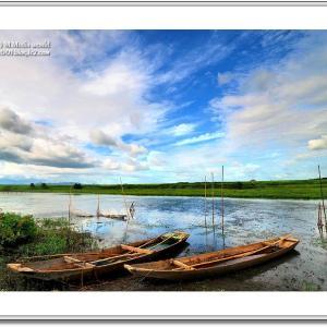 和舟と夏雲