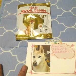 嬉しすぎるっ!ベルちゃんママご一家から姫の誕生日が届いたっ!!!!~バーカウンター製作