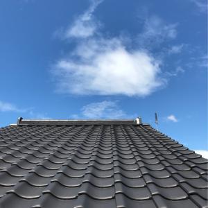 屋根とハス