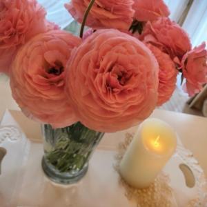 春色の花に