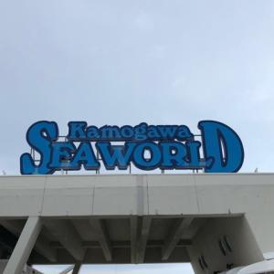 鴨川シーワールドに行って来ました!