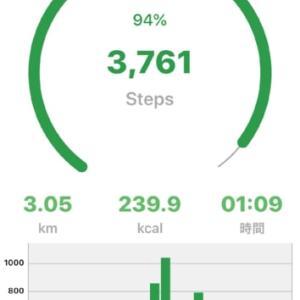 今日も楽しくお散歩してきました。