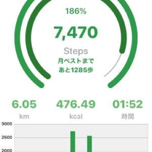 暑かったけど楽しくお散歩してきました。