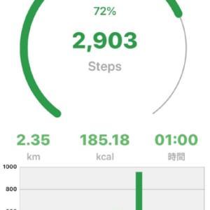 お散歩に行ってきました。
