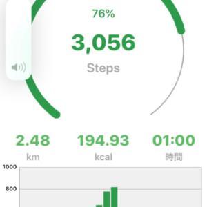 お散歩でお昼を食べてきました。