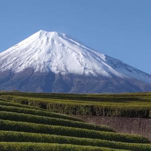 4月の富士山