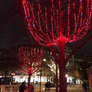 メリークリスマス @paris