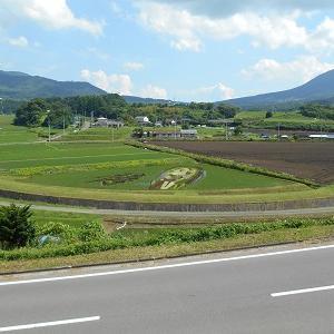群馬県高山村 今年も田んぼアートが色づき始めました