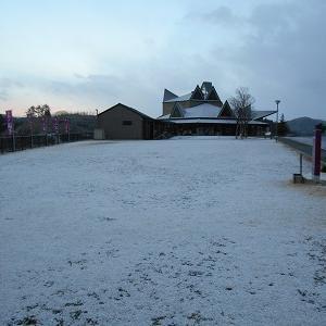 またまた雪が降りました…