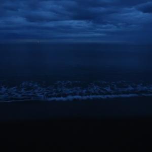 新潟シロギス釣り最終日
