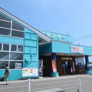 釣り後は道の駅日立「マル佑」で海鮮丼♪