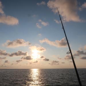 5連休は魚釣り♪〜釣行1日目朝マズメの部