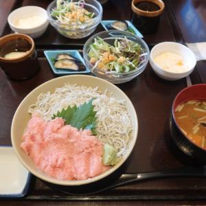 またまたデカ盛り海鮮丼♪〜加須魚がし