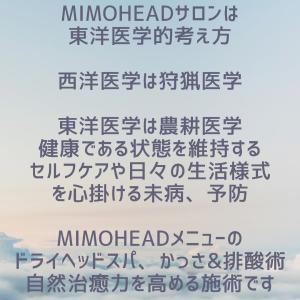 脳疲労について②【東大阪市八戸ノ里ドライヘッドスパとカッサ排酸専門サロン】