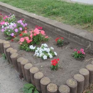 小さな花壇その10