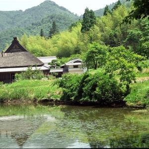 日本茅葺紀行 NO,521 茅葺民家と池