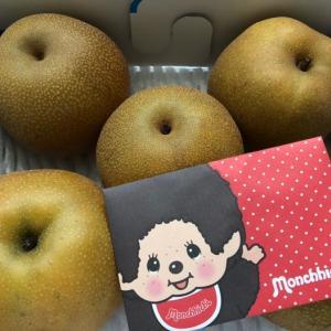 梨とモンチッチ!