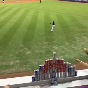 観客「その野球ボールで積んだ缶倒してみろよ!」選手「ええで」ヒョイ