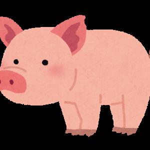 豚の美味しい食べ方 トンカツ、生姜焼き、トンテキ、ミルフィーユ鍋くらいしかない