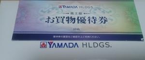 ヤマダホールディングス 2021