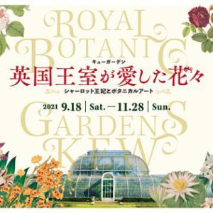 英国王室が愛した花々~シャーロット王妃とボタニカルアート