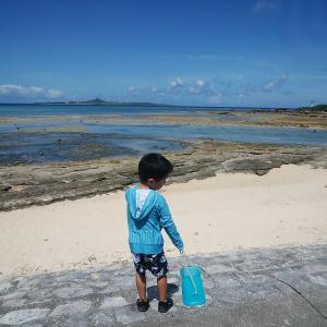 【家族旅行】4歳と10歳、沖縄北部の旅