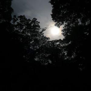 夏至と部分日食