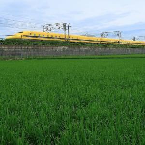 黄色い新幹線♪