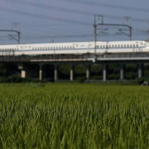 8月の黄色い新幹線 ♪