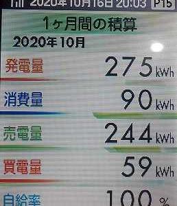 今月の発電状況と葡萄
