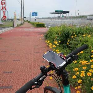 自転車でりんくうビーチへ!