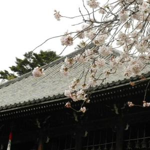 奈良春景まとめ