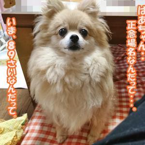 ばあちゃん・・・正念場!!