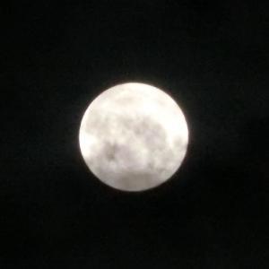 8月の満月は水瓶座♪