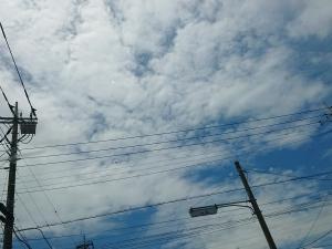 お天気雨と、今日もコレ。