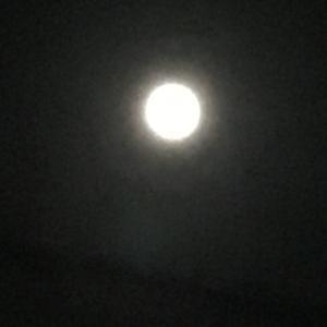 ◆月の女神より