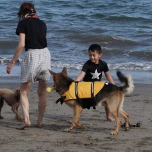 2019年、津久井浜で海水浴1
