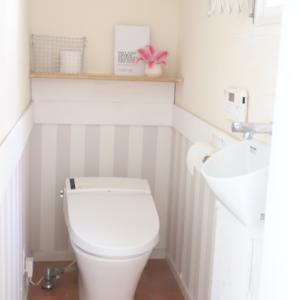 【DIY大失敗編】トイレの気になるところを直そうとした結果