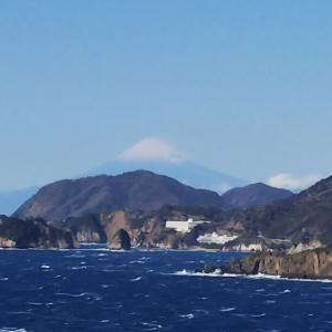 今回の富士山
