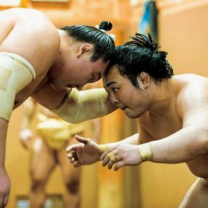 今日から大相撲