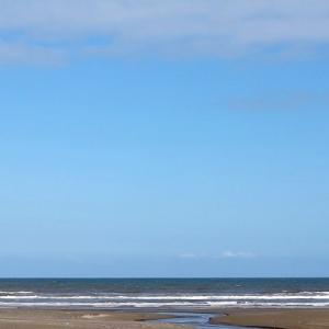 砂浜で しょこあん劇場♪