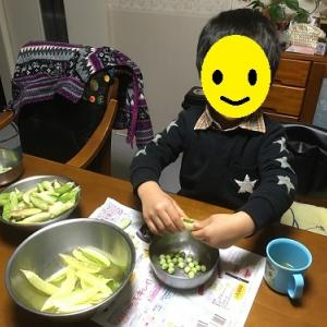 豆ごはんちゃん