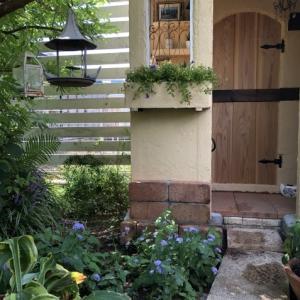 DIY【小屋もどき】プランターに「トレニア」を植えました