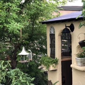 もどき小屋「ウインドウフレーム」にポリカーボネートを付けて雨が入り込まないようにしました