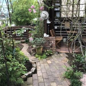 東南の庭「レンガの小道、花壇」ちょっぴり広げました