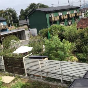 2階から見た庭の様子