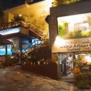 【어반가든】都会の中で緑に囲まれる庭のようなお店(´∀`*)